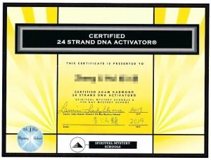24股DNA活化師(24 Strand DNA Activator) 3