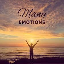 情緒密碼一日一階證書課程2